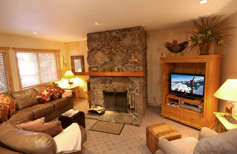 Rental living room at Frias Properties of Aspen - Silverglo.