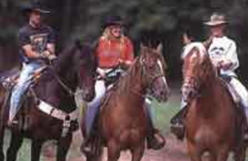 Horseback riding near Winter Clove Inn.