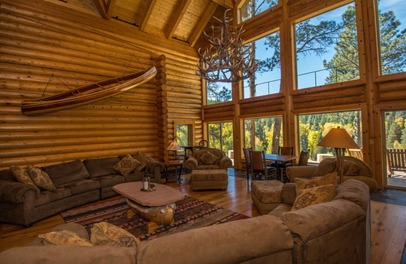 Rental living room at Pagosa Springs Accommodations.