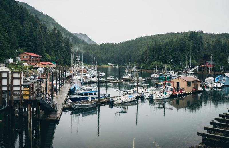 Marina at Elfin Cove Resort.