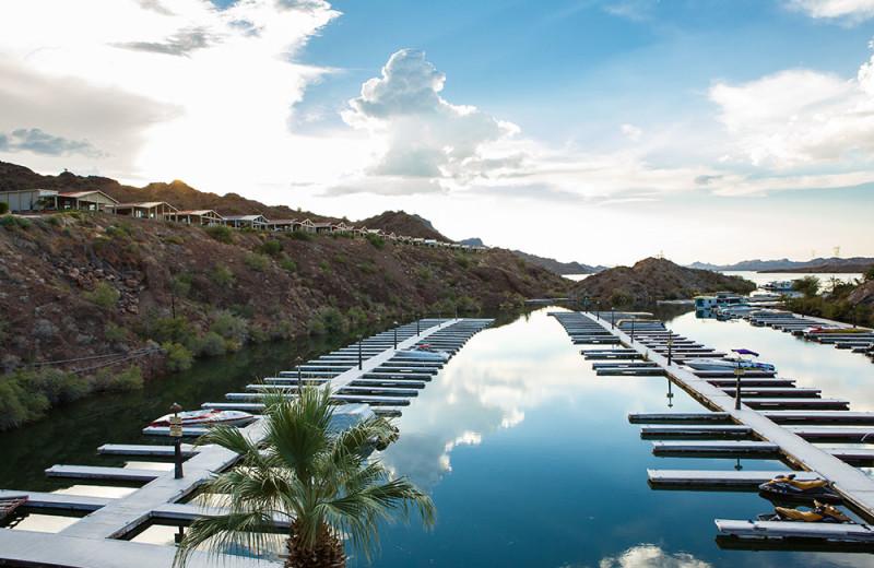 Marina at Havasu Springs Resort.