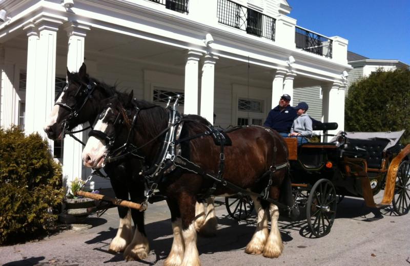 Horse carriage rides at Bar Harbor Inn & Spa.