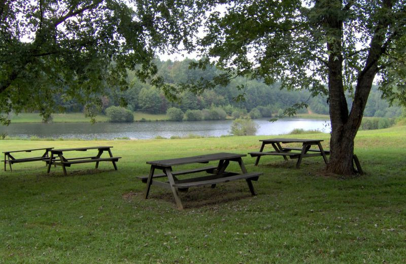 Picnic tables at Cuddle Up Cabin Rentals.