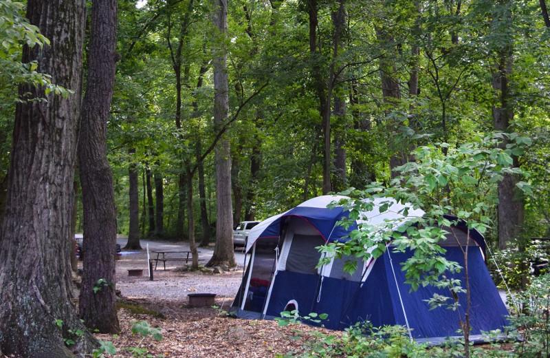 Camping at Yogi Bear's Jellystone Park Hagerstown.
