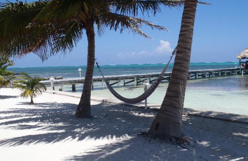 Beach at Caribe Island Resort.