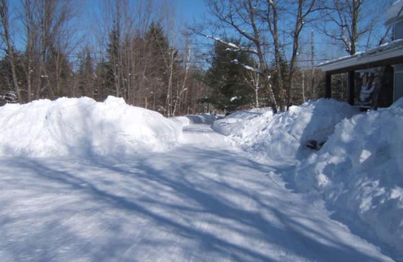 Winter at Walker Lake Resort