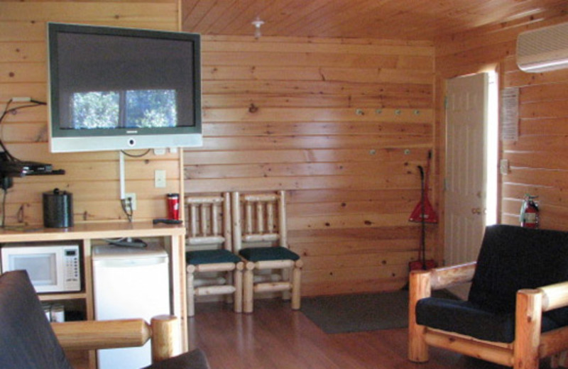 Cabin interior at Shady Roost Lodge.