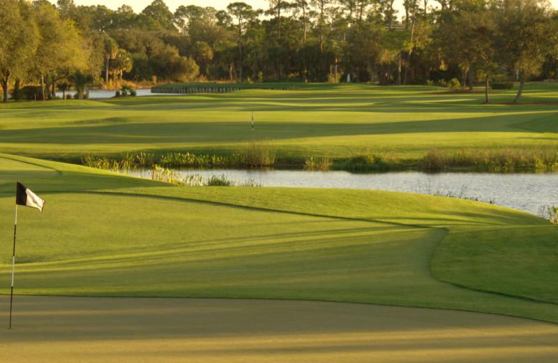 Riverwood Golf Club near Palm Island Resort.