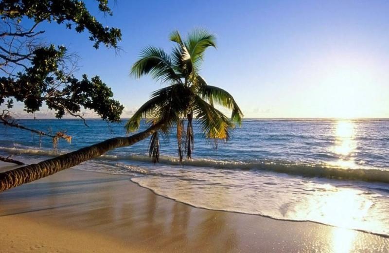 The beach near Gulf Strand Resort.