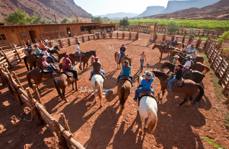 Horseback riding at Red Cliffs Lodge.