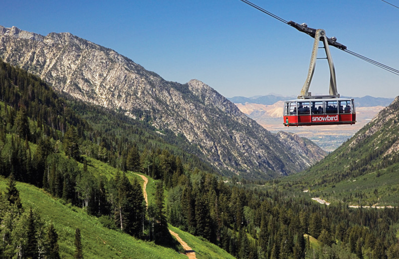 Mountain tram at Canyon Services Vacation Rentals.