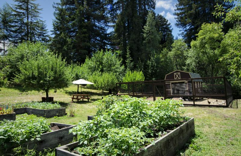 Grounds at Applewood Inn, Restaurant and Spa.