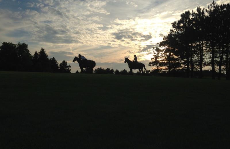 Horseback riding at Five Lakes Resort.