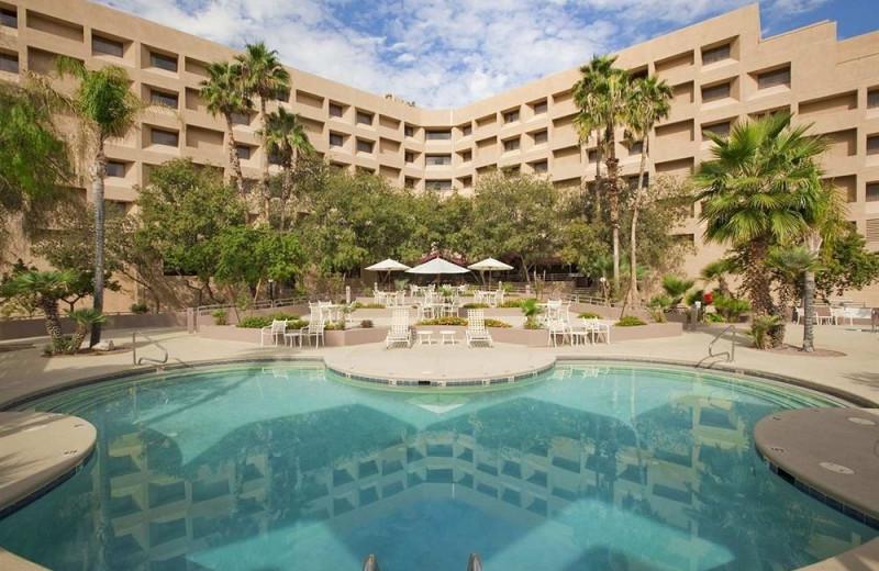 Outdoor pool at Hilton Tucson East.