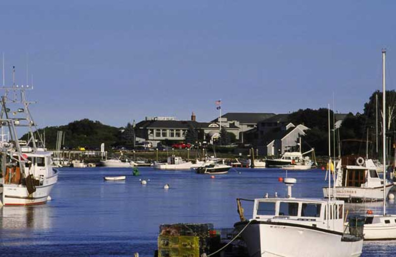 Boats in the harbor at Stage Neck Inn.
