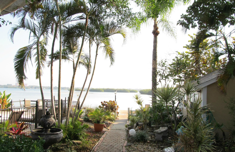 Scenic view at Turtle Beach Resort.