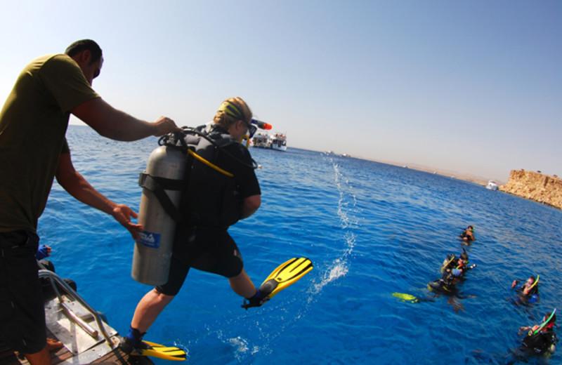 Diving at Camel Dive Club.