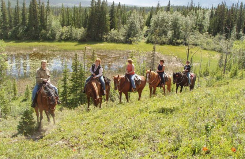 Horseback Riding at Old Entrance B 'n B Cabins