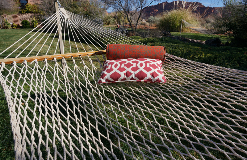 Hammock at Red Mountain Resort & Spa.
