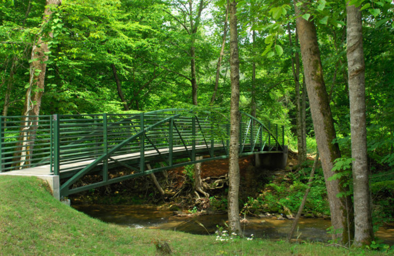 Bridge at Foscoe Rentals.