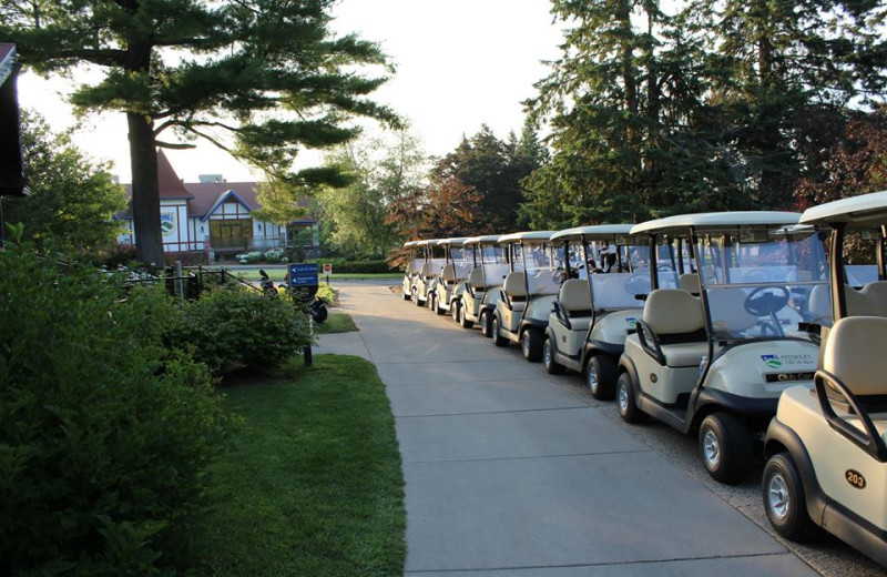 Golf carts at Otsego Club and Resort.