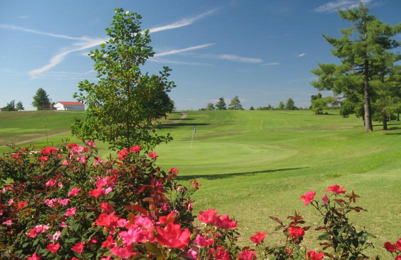 Golf course at Bright Leaf Golf Resort.