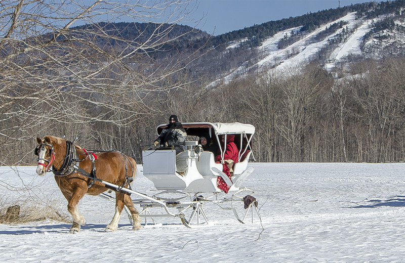 sleigh ride for two -Come for the day or stay for a few nights- Valentine, elopement and honeymoon packages available.