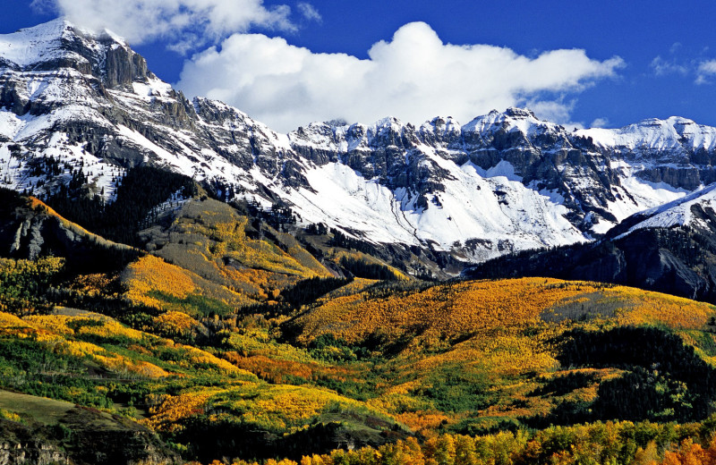 Fall at Mountain Lodge Telluride.