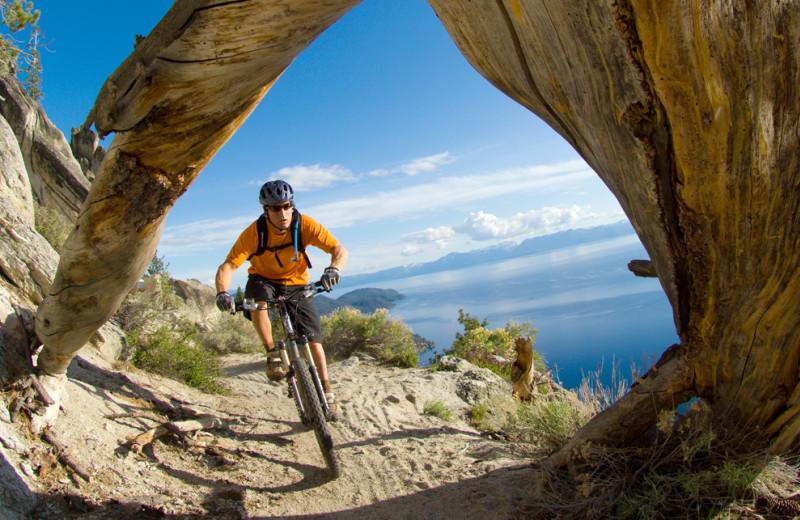 Mountain biking at Tahoe Getaways.