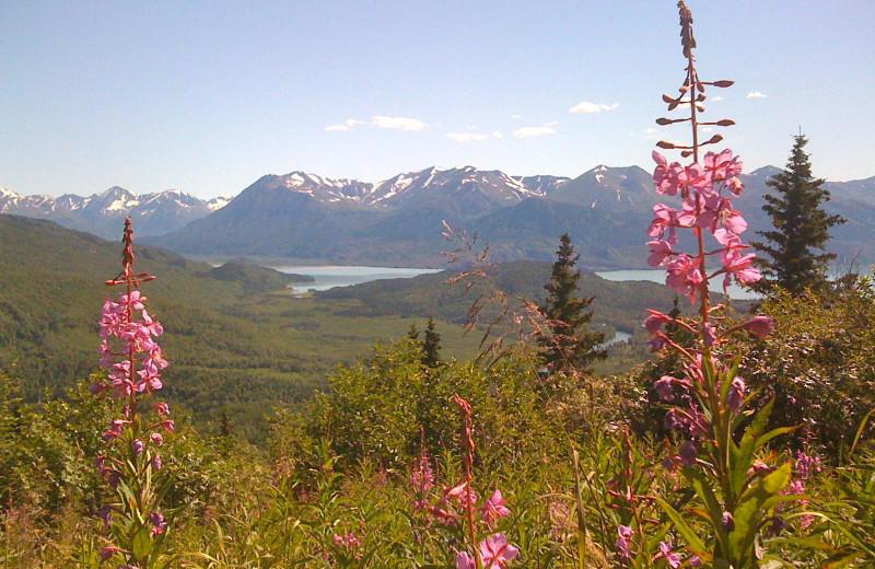 Mountain at Alaska Heavenly Lodge.