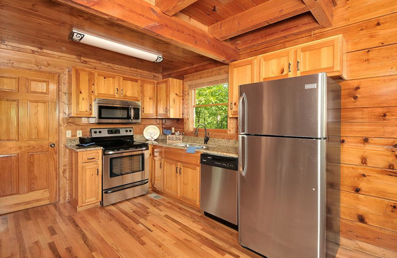 Cabin kitchen at Outrageous Cabins LLC.