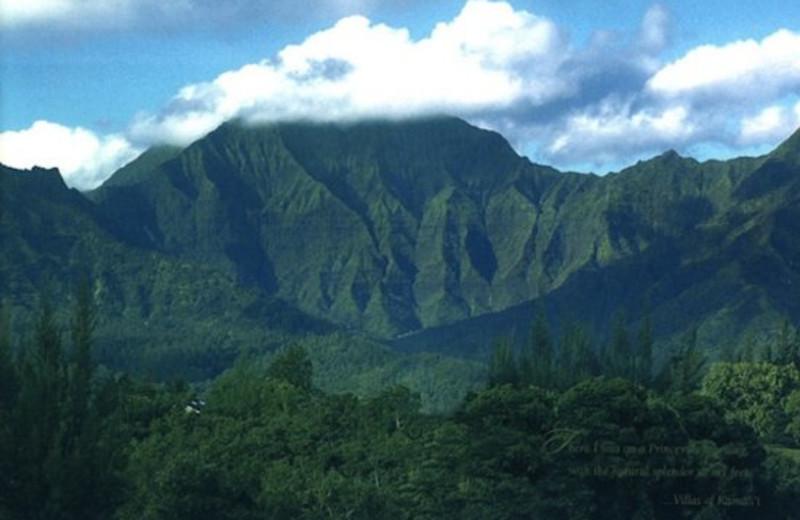Beautiful views at Great Vacation Retreats.