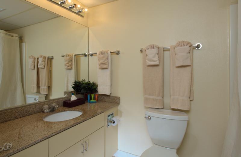 Guest bathroom at Harbor Shores.