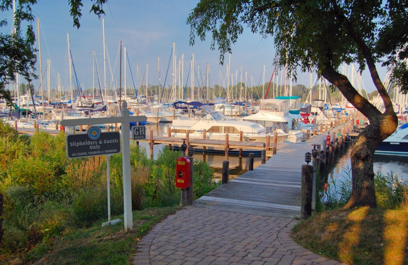 Boat Harbor And Walking Trails at Herrington Harbour