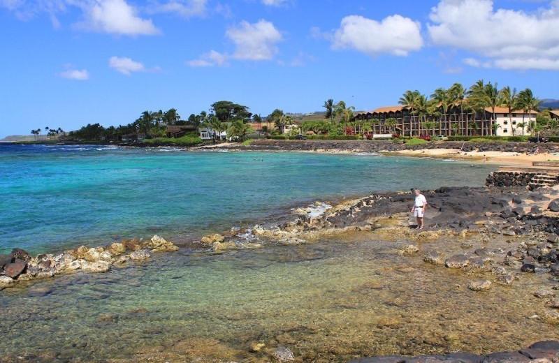 Tide pools at Great Vacation Retreats.
