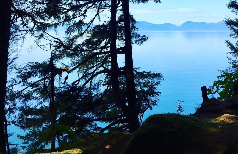 Scenic view at Favorite Bay Lodge.