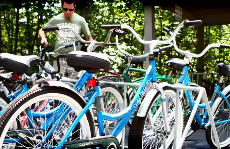 Bikes at Bay Shore Inn.