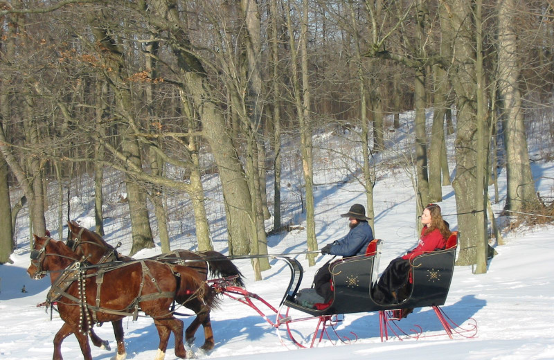Sleigh ride at Guggisberg Swiss Inn/Amish Country Riding Stables.