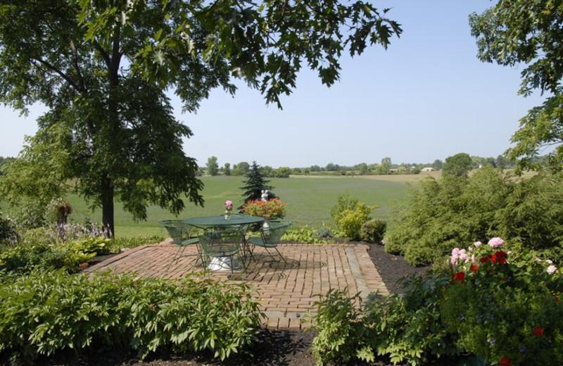 Scenic view from Morgan-Samuels Inn.