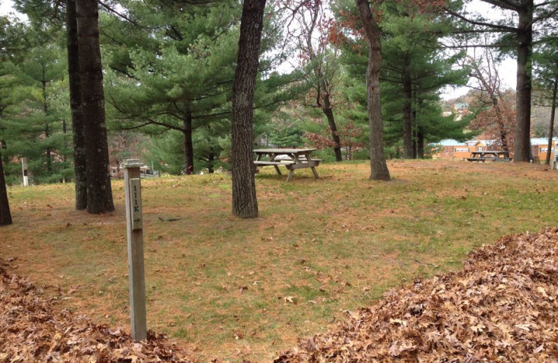 Campground at Jellystone Warrens.