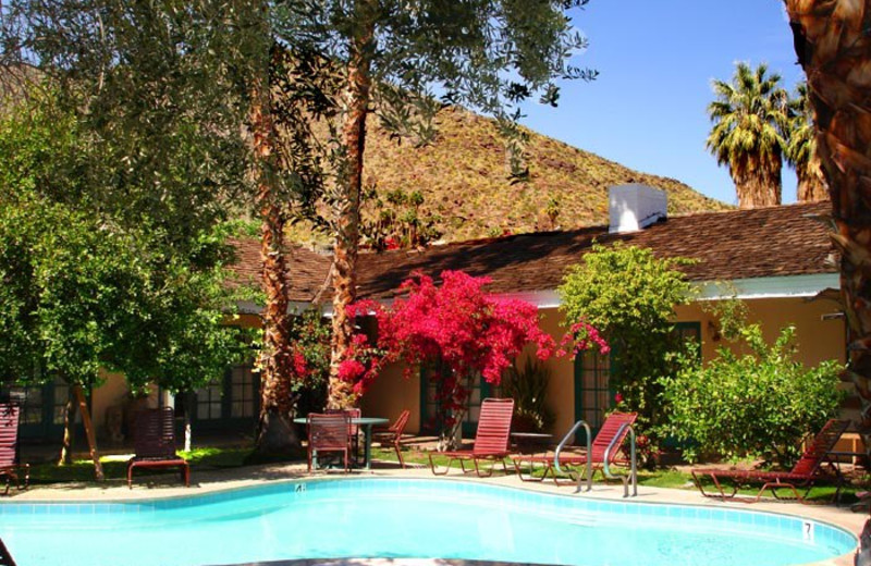 Outdoor pool at Casa Cody.