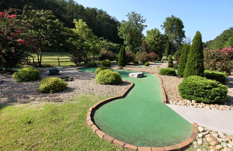Rental mini golf at Eden Crest Vacation Rentals, Inc.