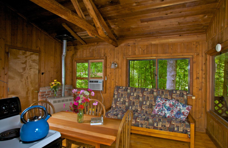Cabin Living Room at Montfair Resort Farm at the foothills for the Blue Ridge Mountains