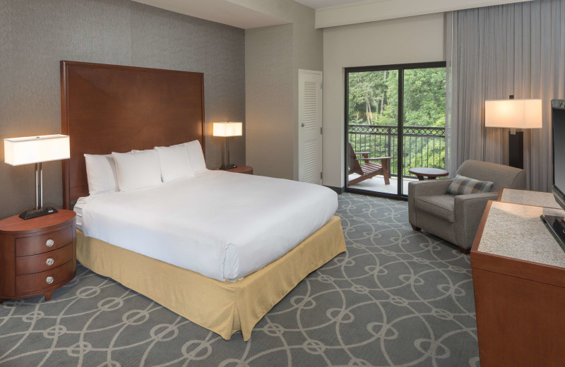 Guest room at DoubleTree by Hilton Asheville - Biltmore.