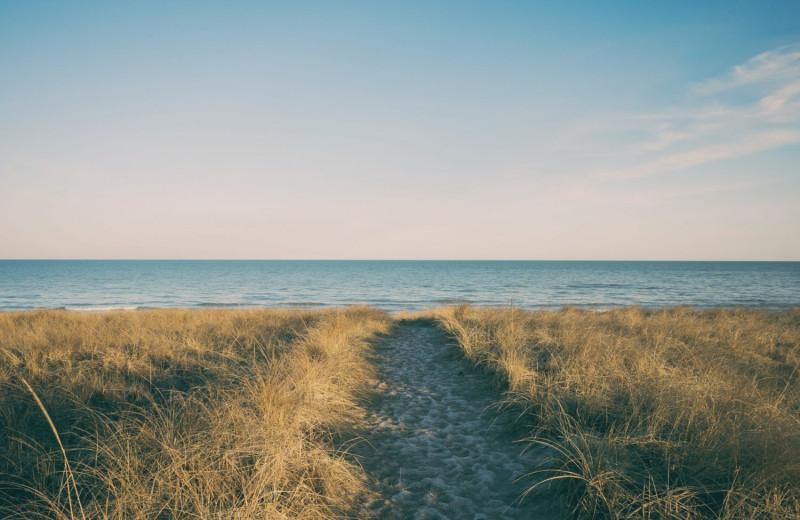 Beach at Hodnett Cooper.
