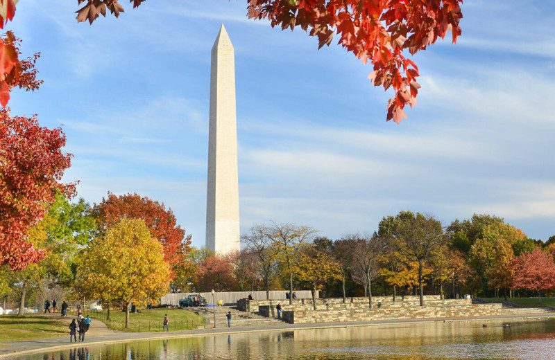 Washington monument at American Guest House.