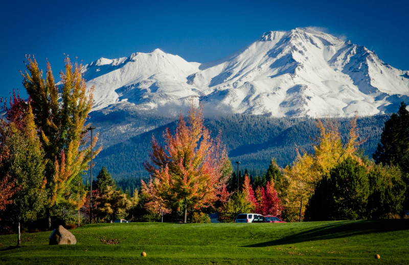 Golf at Mount Shasta Resort.