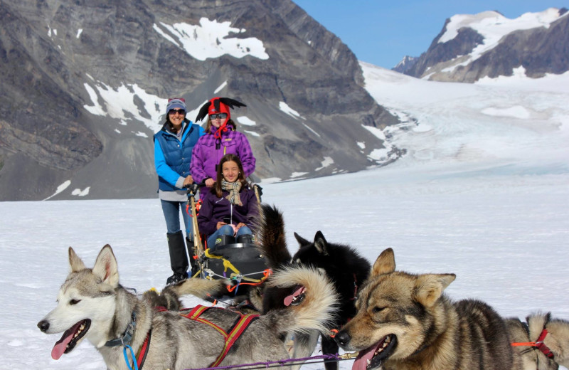 Dog sledding at Soldotna B&B Lodge and Alaska Fishing Charters.