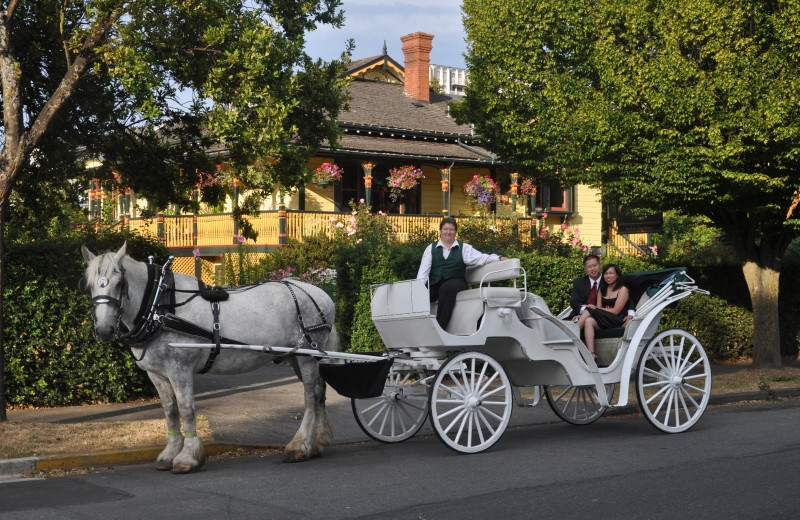 Carriage at Victoria's Historic Inns.