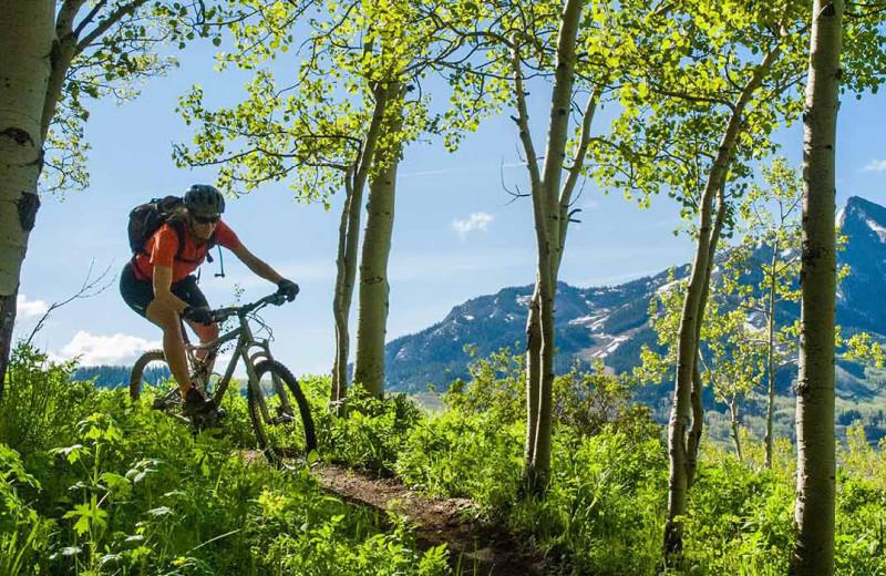 Biking at Alpine Getaways.